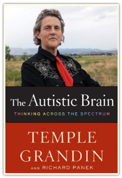 The Autisic Brain